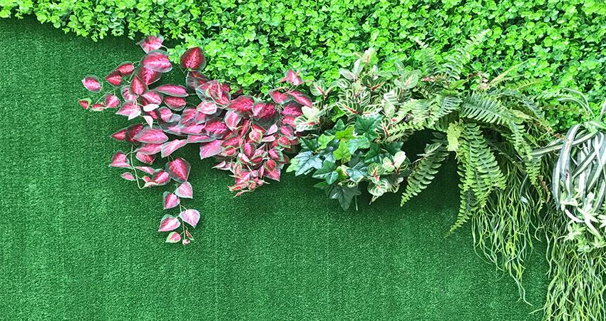 Artificial Ivy; Miami Artificial Ivy; Artificial Ivy Miami; Commercial Artificial Ivy; Artificial Ivy Commercial; Artificial Landscaping; Artificial Landscaping Miami; Miami Artificial Landscaping; Artificial Landscape; Miami Artificial Landscape; Artificial Landscape Miami  #artificialivy #artificialivymiami #miamiartificialivy #Commercialartificialivy #artificialivycommercial #artificiallandscaping #artificiallandscapingmiami #miamiartificiallandscaping; artificiallandscape; miamiartificiallandscape; artificiallandscapemiami